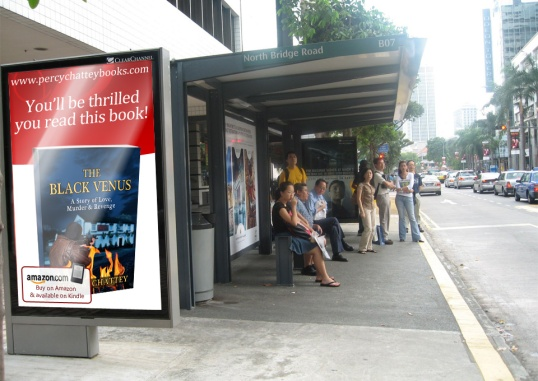 Crime Fiction Book Promotion Poster 2
